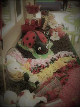 Ladybug candy buffet side angle 1